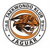 logo_tkd_jaguar_color1